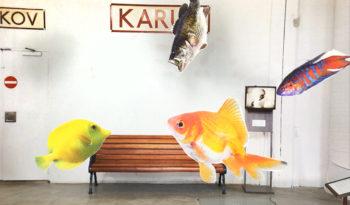 fisk_perron